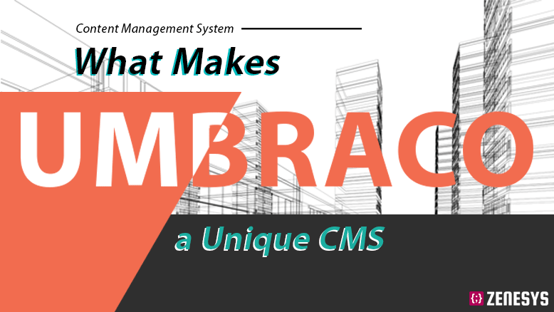 What Makes UMBRACO A Unique CMS
