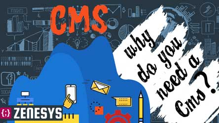 Why do you need a CMS? - Infographic